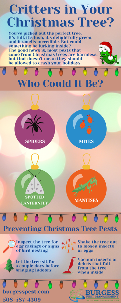 Critters in Christmas Trees