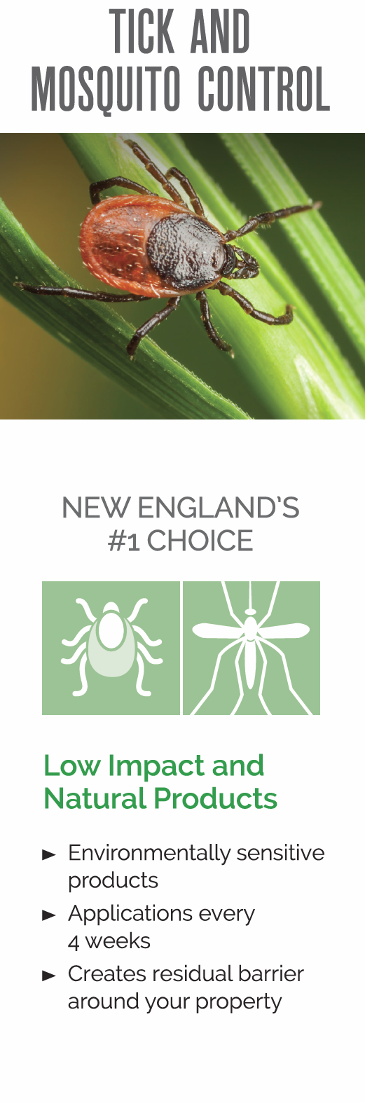tick and mosquito control in new england